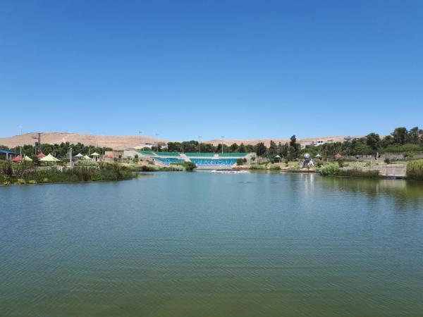אגם דימונה